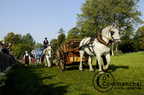 mondial.2011.percheron.87