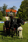 mondial.2011.percheron.126