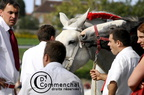 mondial.2011.percheron.145