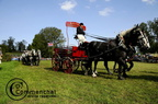 mondial.2011.percheron.162