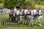 mondial.2011.percheron.165