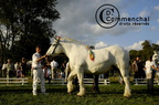 mondial.2011.percheron.221