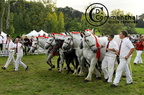 mondial.2011.percheron.242